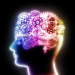 Les fonctions cognitives...Qu'est ce que c'est?